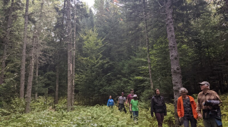 Wolcott Previews Proposed Community Forest