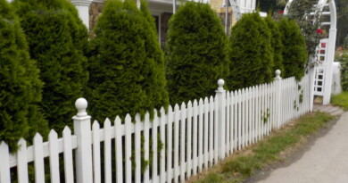 Hedges and Fences