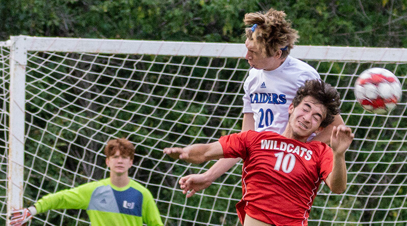 Wildcats Play Well in Upper Division Losses